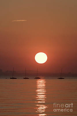 Photograph - Sunrise And Yachts by Clayton Bastiani