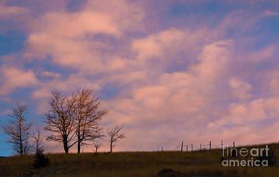 Farmhouse Royalty Free Images - Sunrise Aspen Royalty-Free Image by Steven Krull