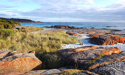 Photograph - Sunrise At Bay Of Fires by Lexa Harpell
