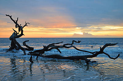 Sunrise At Driftwood Beach 1.4 Art Print