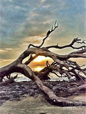 Photograph - Sunrise At Driftwood Beach - Digital Painting by Kerri Farley