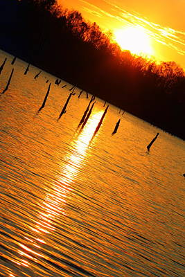 Photograph - Sunrise At East Fork Oh by Susie Weaver