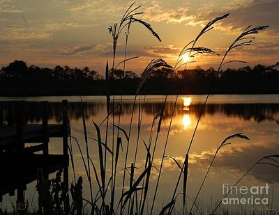 Photograph - Sunrise At Grayton Beach by Robert Meanor