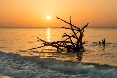 Photograph - Sunrise At Hunting Island by Lynne Jenkins