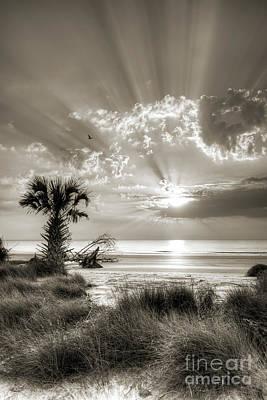 Sunrise At Hunting Island State Park South Carolina Original by Dustin K Ryan