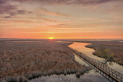 Landscape Photograph - Sunrise At Point Pelee by Nick Seman