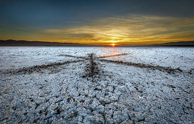 Photograph - Sunrise At Soda Lake by Tim Bryan
