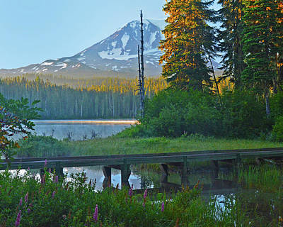 Photograph - Sunrise At Takhlakh Lake Under Mt Adams by Jack Moskovita