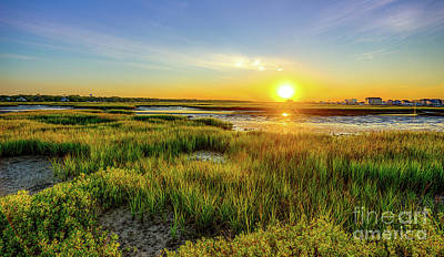Photograph - Sunrise At The Marsh by David Smith