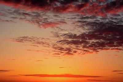Photograph - Sunrise At Treasure Island by RC Pics