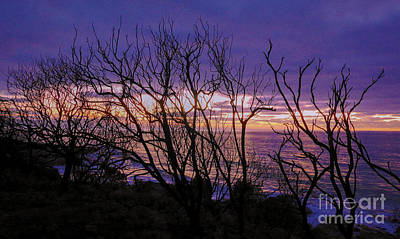 Photograph - Sunrise At Wye River 3 by Lexa Harpell