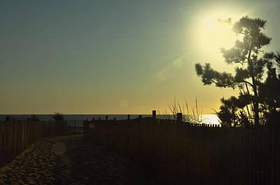 Photograph - Sunrise Bask by JAMART Photography