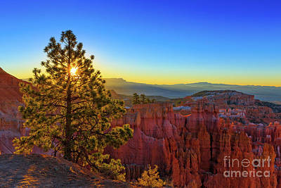 Photograph - Sunrise Bryce Canyon National Park One by Edward Fielding