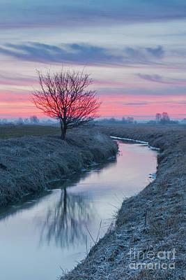 Photograph - Sunrise By The Pisia River by Jaroslaw Suchozebrski