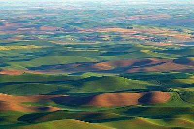 Photograph - Sunrise Colors On The Palouse by Lynn Hopwood