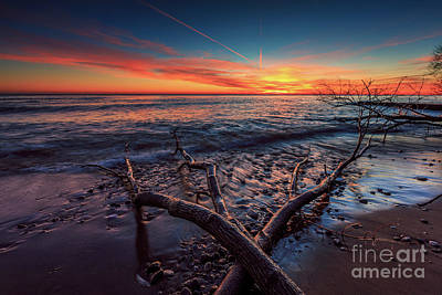 Photograph - Sunrise Crossing  by Andrew Slater