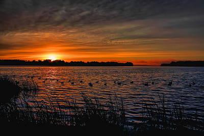 Photograph - Sunrise Diver Duck Hunt by Dale Kauzlaric