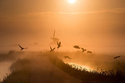 Goose Wall Art - Photograph - Sunrise Flight by Harm Klaverdijk