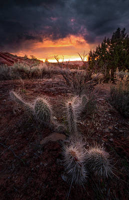 Photograph - Sunrise Glow // Page, Arizona by Nicholas Parker