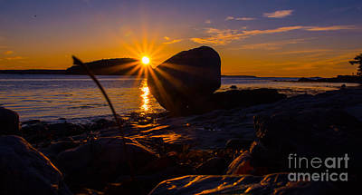Photograph - Sunrise In Bar Harbor Maine by New England Photography