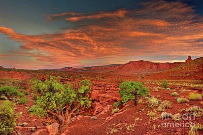 Photograph - Sunrise In Capitol Reef National Park Utah by Dave Welling