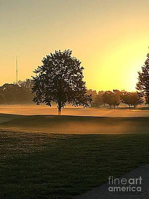 Photograph - Sunrise In Forest Park by Nancy Kane Chapman