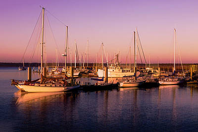 Photograph - Sunrise In Golds And Lavender by Debra and Dave Vanderlaan