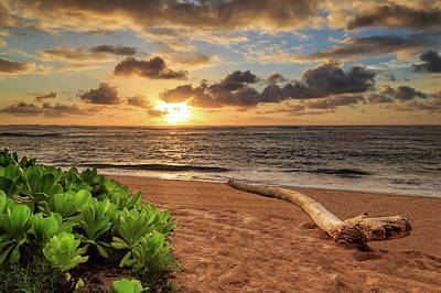 Photograph - Sunrise In Kapaa by James Eddy