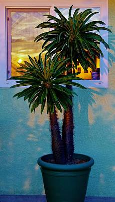 Photograph - Sunrise In Kitchen Window 1 by Phyllis Spoor