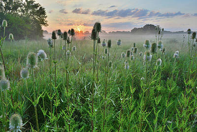 Photograph - Sunrise In Lakewood Forest Preserve by Ray Mathis
