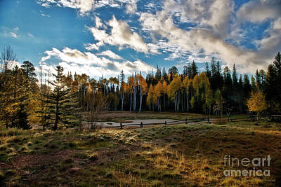Photograph - Sunrise In Moutain Meadow by David Arment