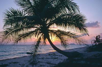 Photograph - Sunrise In Playa Del Carmen by Gary Shepard