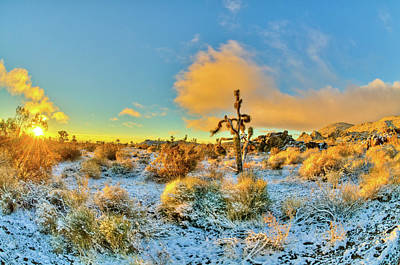 Photograph - Sunrise In Snowy Desert by Connie Cooper-Edwards