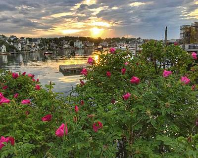 Photograph - Sunrise In Stonington, Maine by Anne Sands