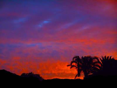 Photograph - Sunrise Jungle by Mark Blauhoefer