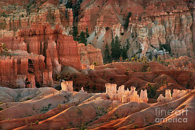 Photograph - Sunrise Light Bryce Canyon National Park Utah by Dave Welling