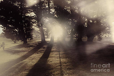 Nature Scene Photograph - Sunrise Meadow. Artistic Vintage Landscape by Jorgo Photography - Wall Art Gallery