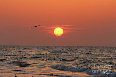 Photograph - Sunrise Mexico Beach 2 by Rick Lipscomb