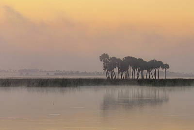 Photograph - Sunrise Mist At Lake by Stefan Mazzola