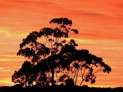 Photograph - Sunrise Mystery by Mark Blauhoefer