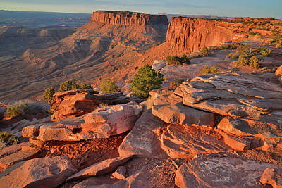 Photograph - Sunrise On Grand View Point And Junction Butte In Canyonlands Np by Ray Mathis
