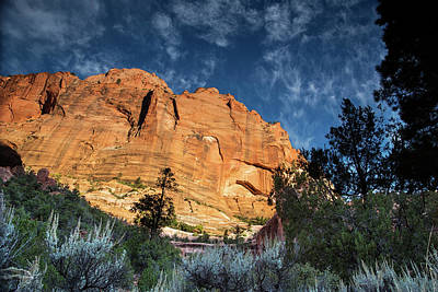 Photograph - Sunrise On Kolob Arch Trail by Kunal Mehra