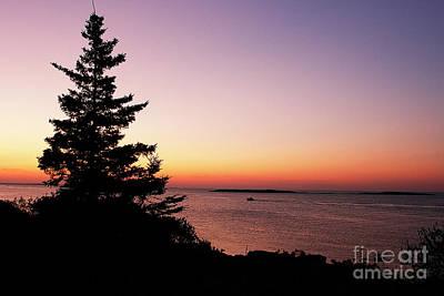 Photograph - Sunrise On The Atlantic by Cindi Ressler