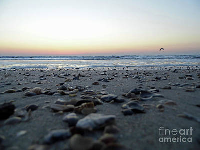 Photograph - Sunrise On The Beach by D Hackett