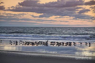Photograph - Sunrise On The Beach by Richard Lynch