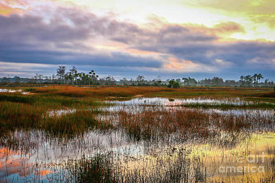 Photograph - Sunrise On The Marsh #1 by Tom Claud