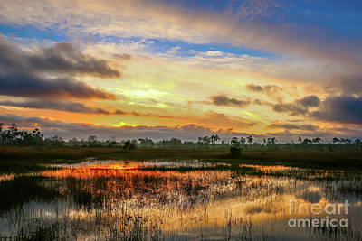 Photograph - Sunrise On The Marsh #2 by Tom Claud