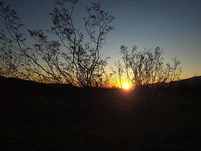 School Teaching - Sunrise on the Mojave Desert by Richard Thomas