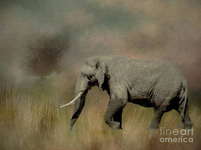 Sunrise On The Savannah Art Print