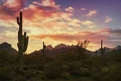 Photograph - Sunrise On The Sonoran Horizon  by Saija Lehtonen